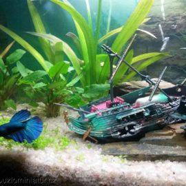 Miniatury pod vodou