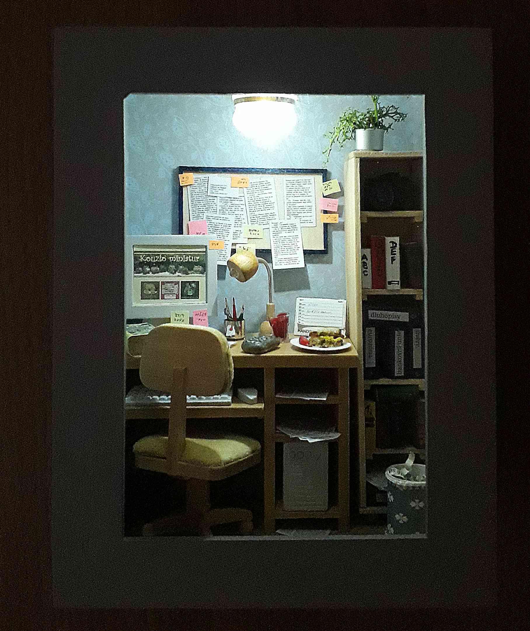 osvětlená pracovna